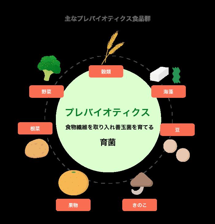 エサとなる食物繊維を取り入れ善玉菌を育てる「プレ・バイオティクス」